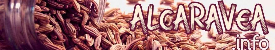Alcaravea.info
